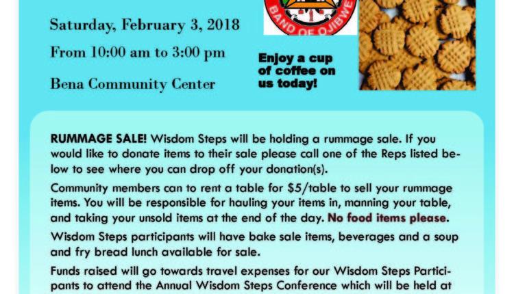 wisdom steps fundraiser feb 3