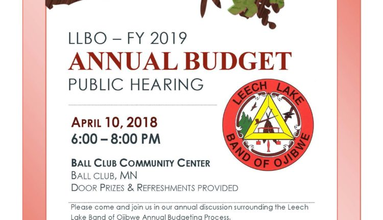 FY 2019 Budget Hearing District I