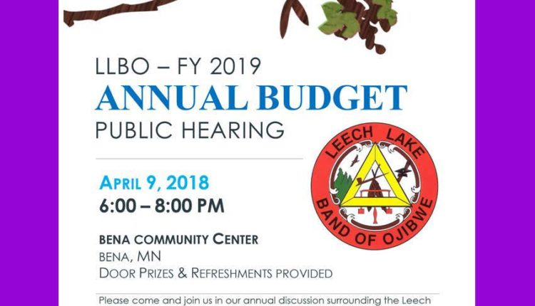 FY 2019 Budget Hearing District II (002)