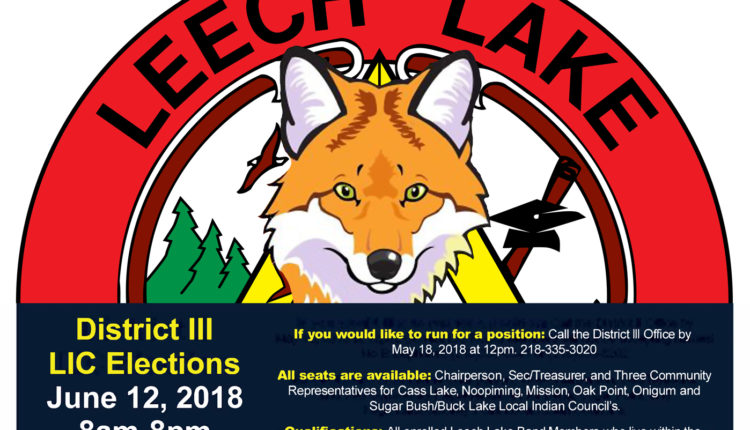 d3_LIC-Elections